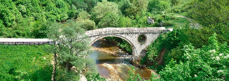 Goat's Bridge