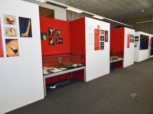 Temporary exhibition at National Museum in Prague