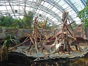 Animal enclosures at Prague's Zoo