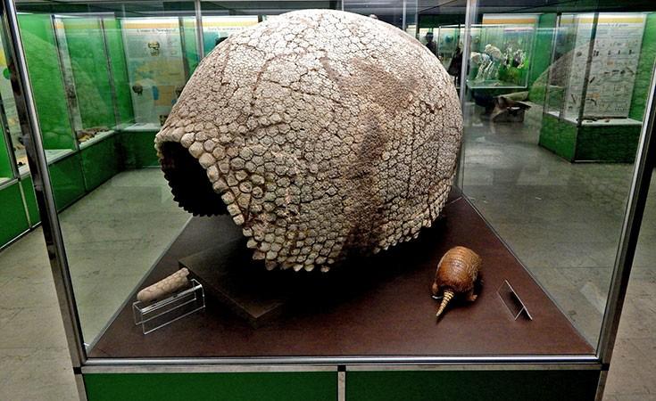 Prirodnjački muzej u Milanu