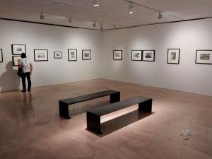 Temporary exhibition at Ara Pacis Museum