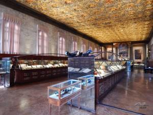 Great School of San Marko in Venice, Capitolare room