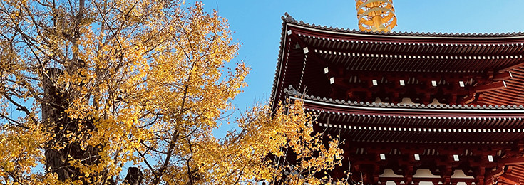 Gradska četvrt Asakusa