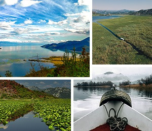 Attractions in Skadar Lake
