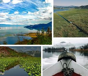 Atrakcije Skadarskog jezera