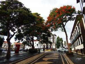 City of Funchal