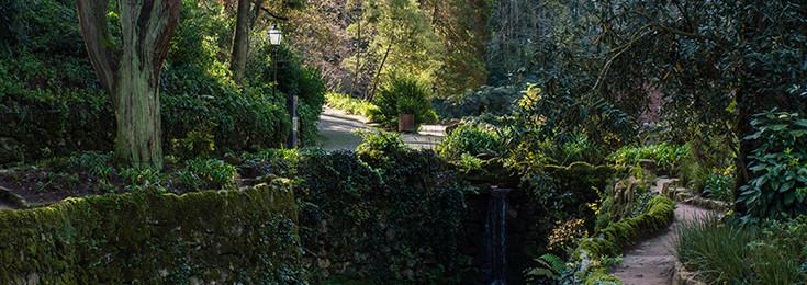 Park Estrela