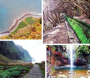 Adventure in Madeira Island