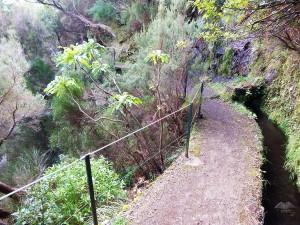 Rabacal hiking trails on the Island of Madeira