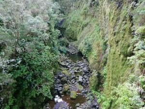 Pogled sa Rabasal planinarskih staza