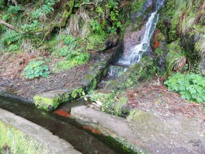 Characteristic levada canals on Rabacal hiking trails