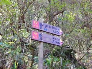 Signs alongside Rabacal hiking trail