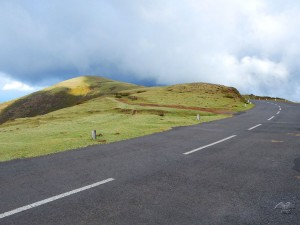 The road that leads to Rabacal hiking trails