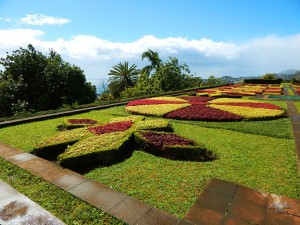 Botanical garden in Funchal