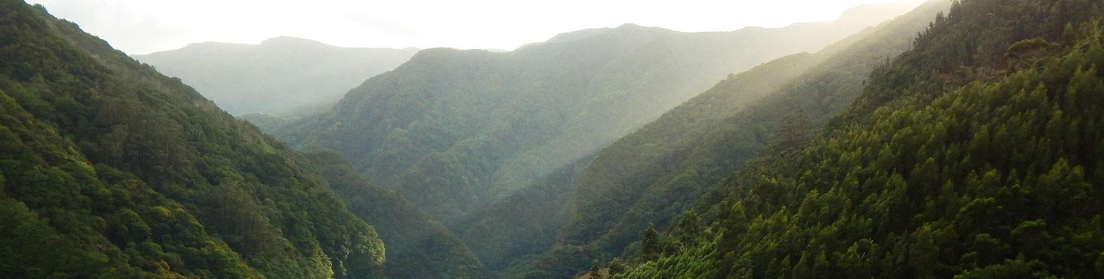 Istorija Ostrva Madeire