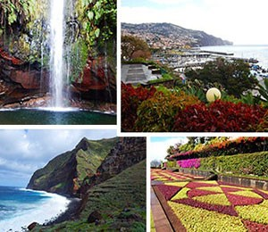 Photos of Madeira Island