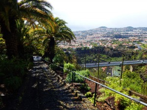 View from the Botanical Garden in Funchal