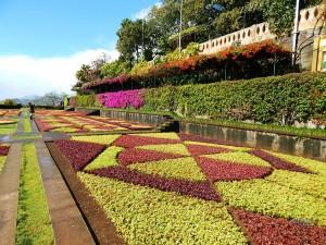 Botanical Garden in Funchal