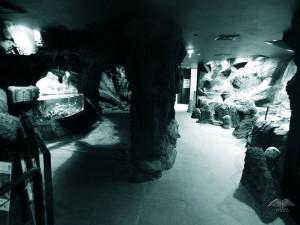 Akvarijum na ostrvu Madeira u gradiću Porto Moniž