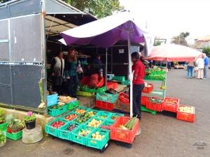 Fruit market in Santana town on Madira Island