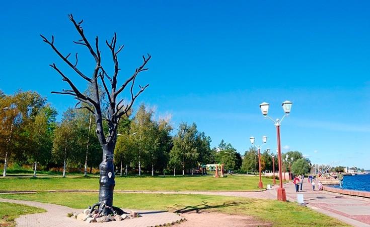 Drvo želja