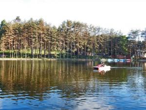 Zlatiborsko veštačko jezero