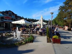 Naselje Zlatibor-Kraljeve vode