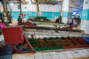 Uva Halpewatte fabrika čaja