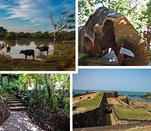 Attractions in Sri Lanka